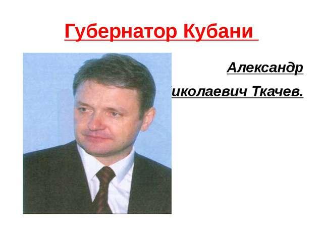 Губернатор Кубани Александр Николаевич Ткачев.