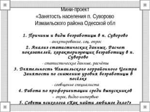 Мини-проект «Занятость населения п. Суворово Измаильского района Одесской обл