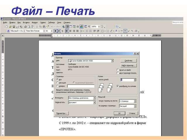 Файл – Печать