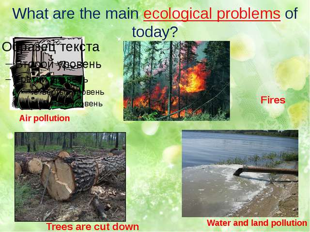 What are the main ecological problems of today? Air pollution Water and land...