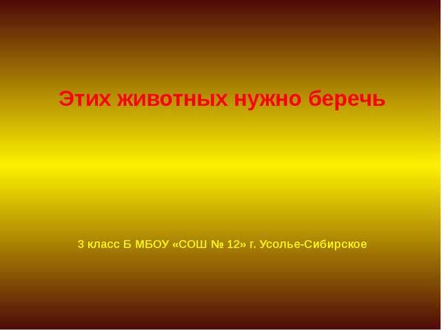3 класс Б МБОУ «СОШ № 12» г. Усолье-Сибирское Этих животных нужно беречь