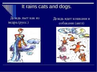 It rains cats and dogs. Дождь льет как из ведра.(русс.) Дождь идет кошками и
