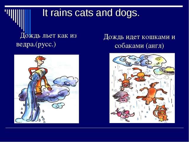 It rains cats and dogs. Дождь льет как из ведра.(русс.) Дождь идет кошками и...