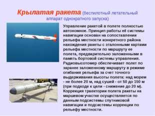 Крылатая ракета (беспилотный летательный аппарат однократного запуска) Управл