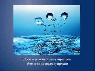 Вода – важнейшее вещество для всех живых существ