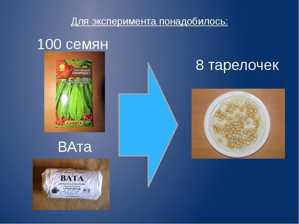 Для эксперимента понадобилось: ВАта 100 семян 8 тарелочек