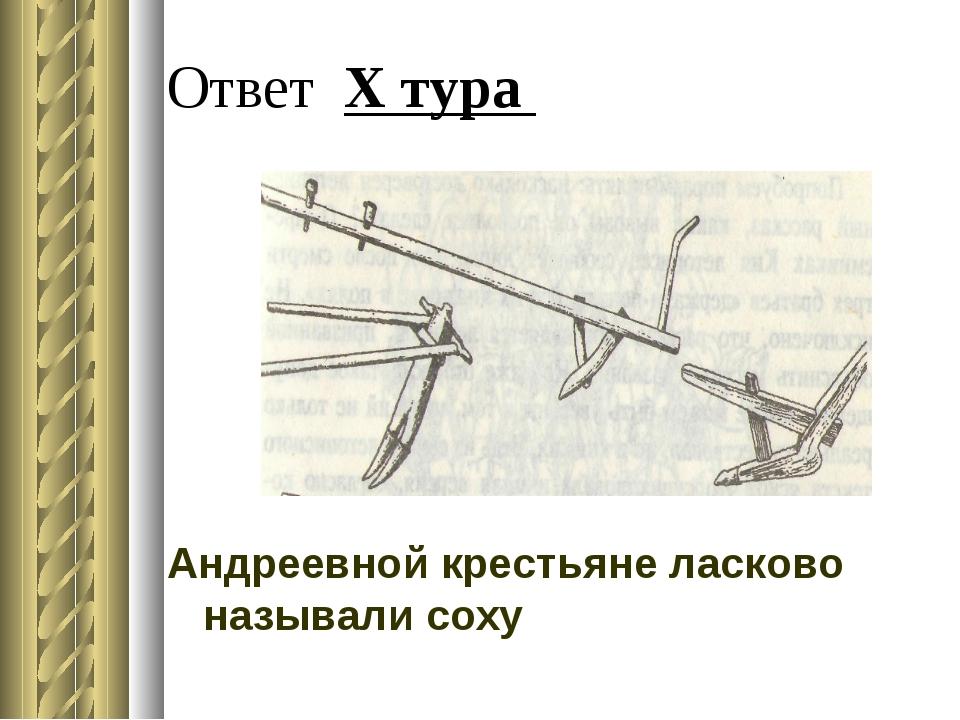 Ответ X тура Андреевной крестьяне ласково называли соху
