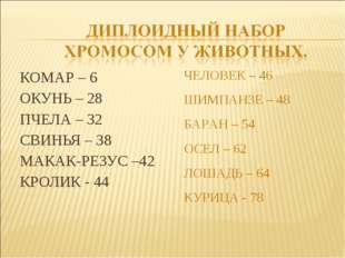 КОМАР – 6 ОКУНЬ – 28 ПЧЕЛА – 32 СВИНЬЯ – 38 МАКАК-РЕЗУС –42 КРОЛИК - 44 ЧЕЛОВ