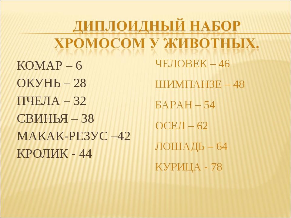 КОМАР – 6 ОКУНЬ – 28 ПЧЕЛА – 32 СВИНЬЯ – 38 МАКАК-РЕЗУС –42 КРОЛИК - 44 ЧЕЛОВ...