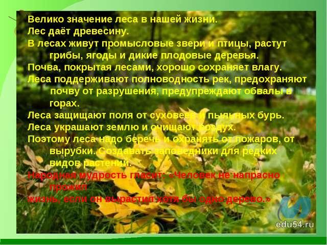 Велико значение леса в нашей жизни. Лес даёт древесину. В лесах живут промысл...