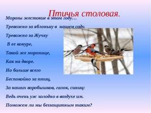 Птичья столовая. Морозы жестокие в этом году… Тревожно за яблоньку в нашем с