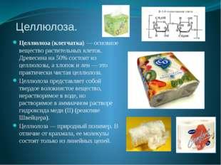 Целлюлоза. Целлюлоза (клетчатка) — основное вещество растительных клеток. Дре