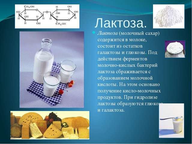 Лактоза. Лактоза (молочный сахар) содержится в молоке, состоит из остатков га...