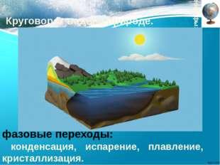 Круговорот воды в природе. Географы: фазовые переходы: конденсация, испарение