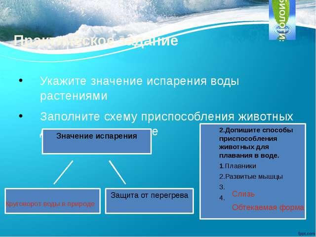 Практическое задание Укажите значение испарения воды растениями Заполните схе...
