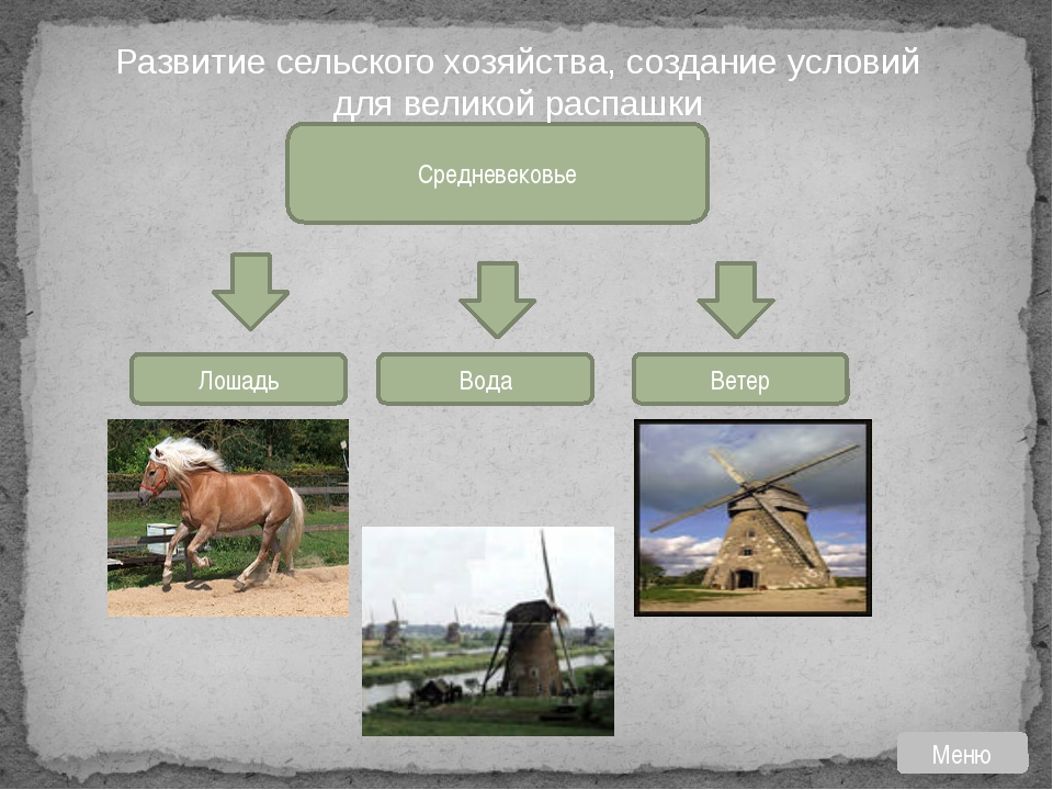 Географическое единство народов западноевропейской цивилизации обеспечивалось...