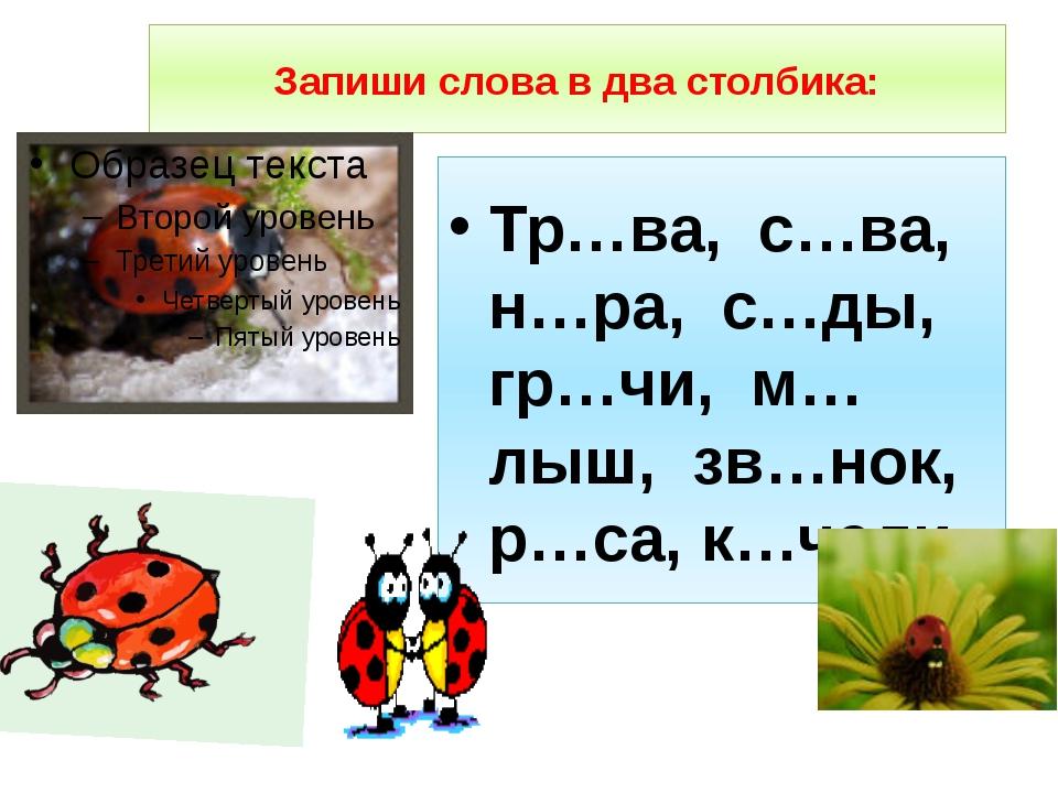Запиши слова в два столбика: Тр…ва, с…ва, н…ра, с…ды, гр…чи, м…лыш, зв…нок, р...