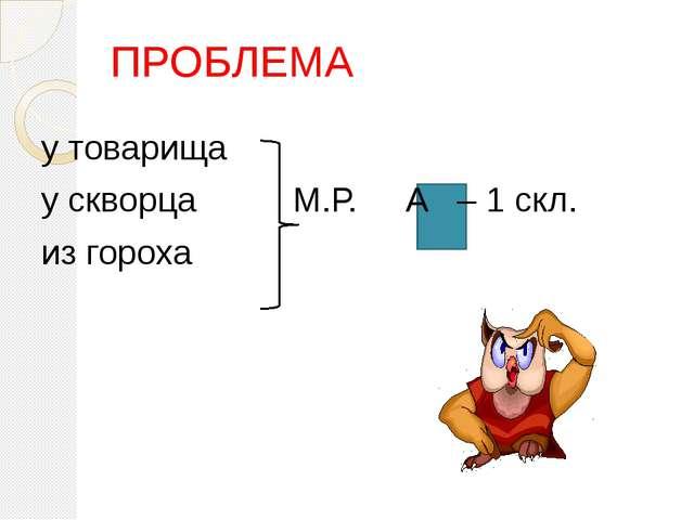 ПРОБЛЕМА у товарища у скворца М.Р. А – 1 скл. из гороха