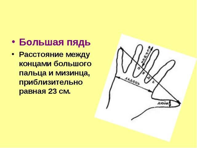 Большая пядь Расстояние между концами большого пальца и мизинца, приблизитель...