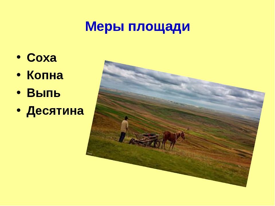 Меры площади Соха Копна Выпь Десятина