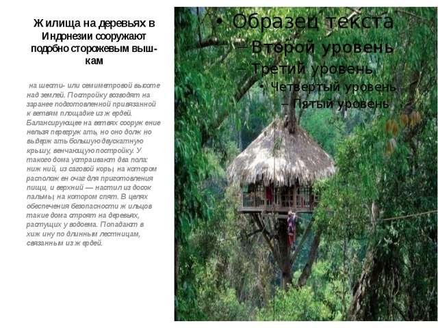 Жилища на деревьях в Индонезии сооружают подобно сторожевым выш-кам на шести-...