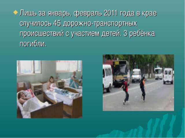 Лишь за январь, февраль 2011 года в крае случилось 45 дорожно-транспортных пр...