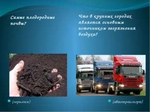 Самые плодородные почвы? Что в крупных городах является основным источником з