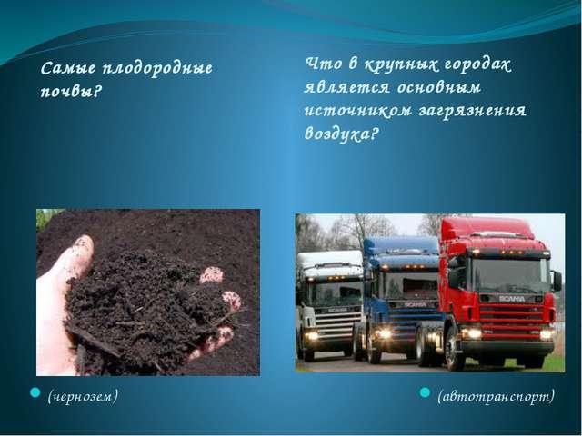 Самые плодородные почвы? Что в крупных городах является основным источником з...