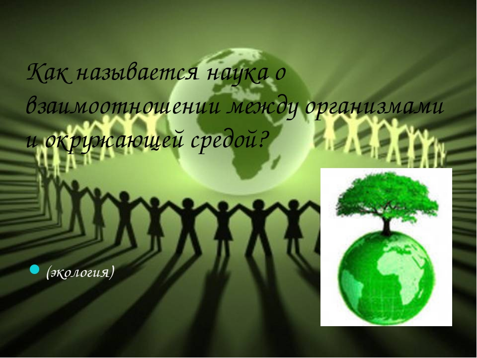Как называется наука о взаимоотношении между организмами и окружающей средой?...