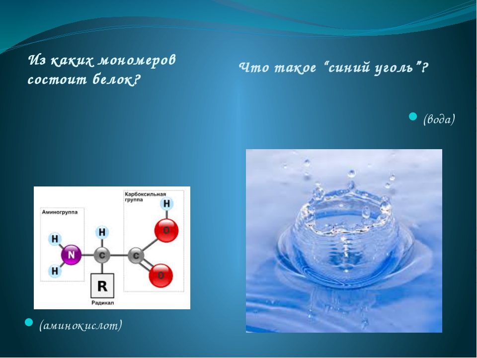 """Из каких мономеров состоит белок? Что такое """"синий уголь""""? (аминокислот) (вода)"""