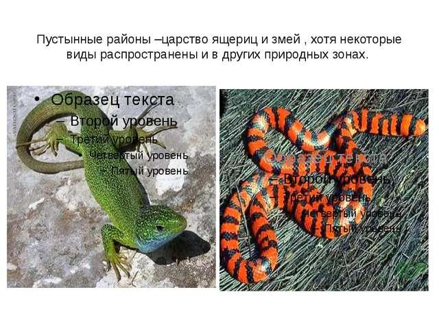 Пустынные районы –царство ящериц и змей , хотя некоторые виды распространены...
