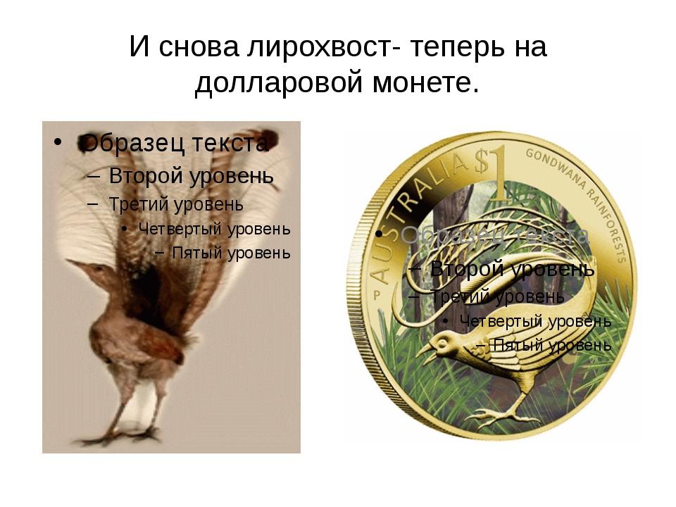 И снова лирохвост- теперь на долларовой монете.