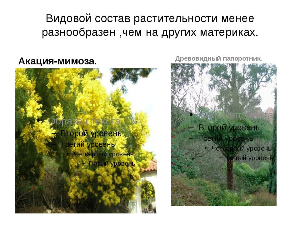 Видовой состав растительности менее разнообразен ,чем на других материках. Ак...