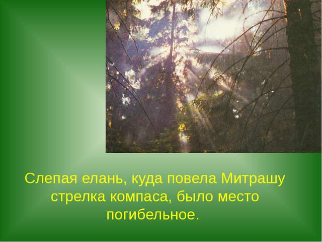 Слепая елань, куда повела Митрашу стрелка компаса, было место погибельное.