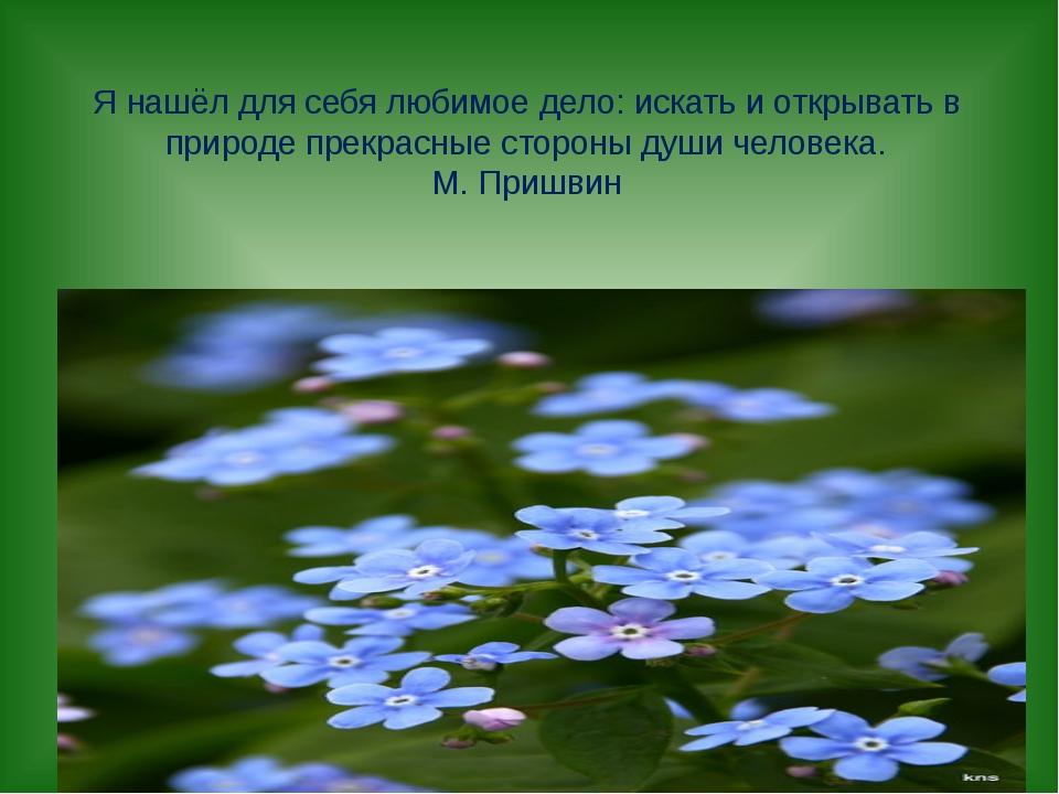 Я нашёл для себя любимое дело: искать и открывать в природе прекрасные сторон...