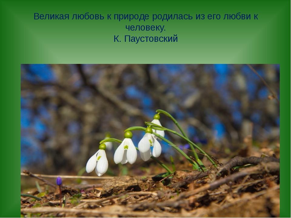 Великая любовь к природе родилась из его любви к человеку. К. Паустовский