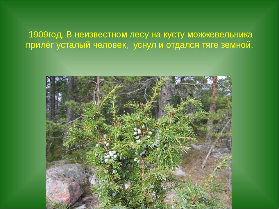 1909год. В неизвестном лесу на кусту можжевельника прилёг усталый человек, ус...