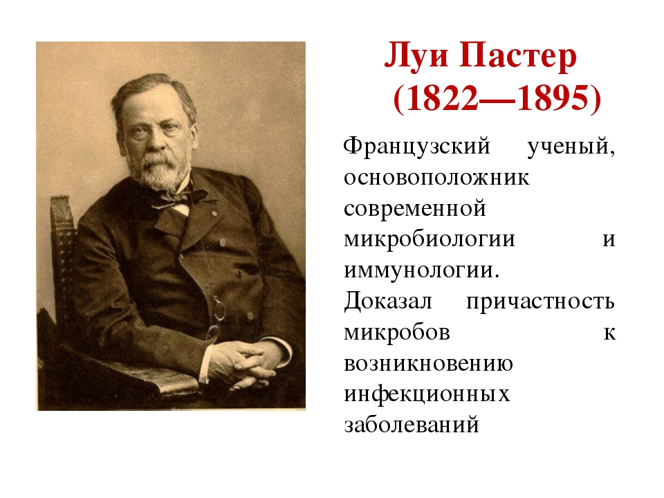 Луи Пастер (1822—1895) Французский ученый, основоположник современной микроби...