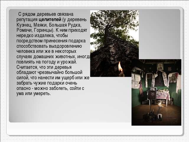 С рядом деревьев связана репутация целителей (у деревень Кузнец, Маяки, Боль...