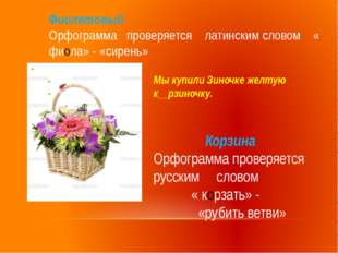 Фиолетовый Орфограмма проверяется латинским словом « фиола» - «сирень» Корзин