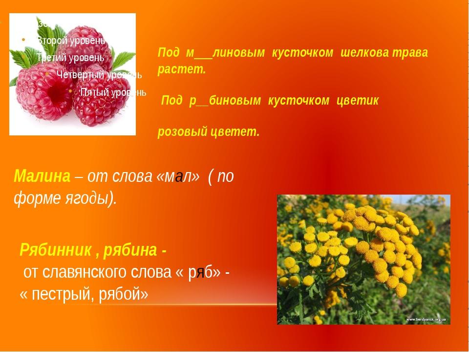 Под м__линовым кусточком шелкова трава растет. Под р__биновым кусточком цвети...