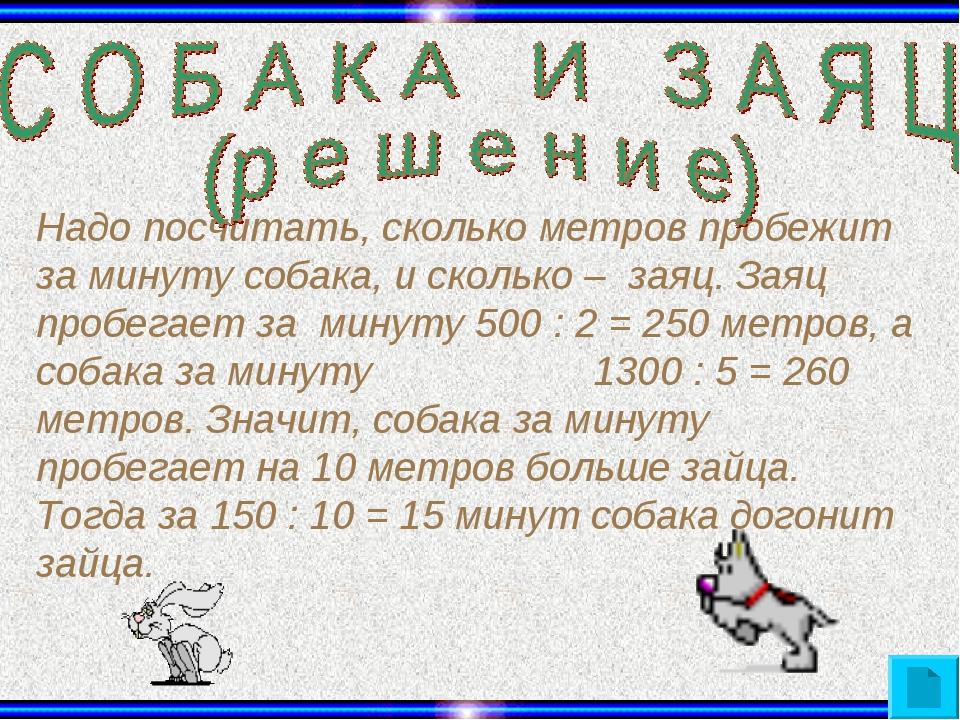 Надо посчитать, сколько метров пробежит за минуту собака, и сколько – заяц. З...