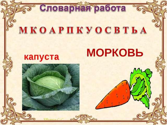 МОРКОВЬ капуста Квитка С. С.