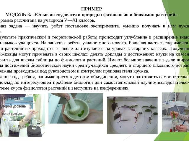 ПРИМЕР МОДУЛЬ 3. «Юные исследователи природы: физиология и биохимия растений»...