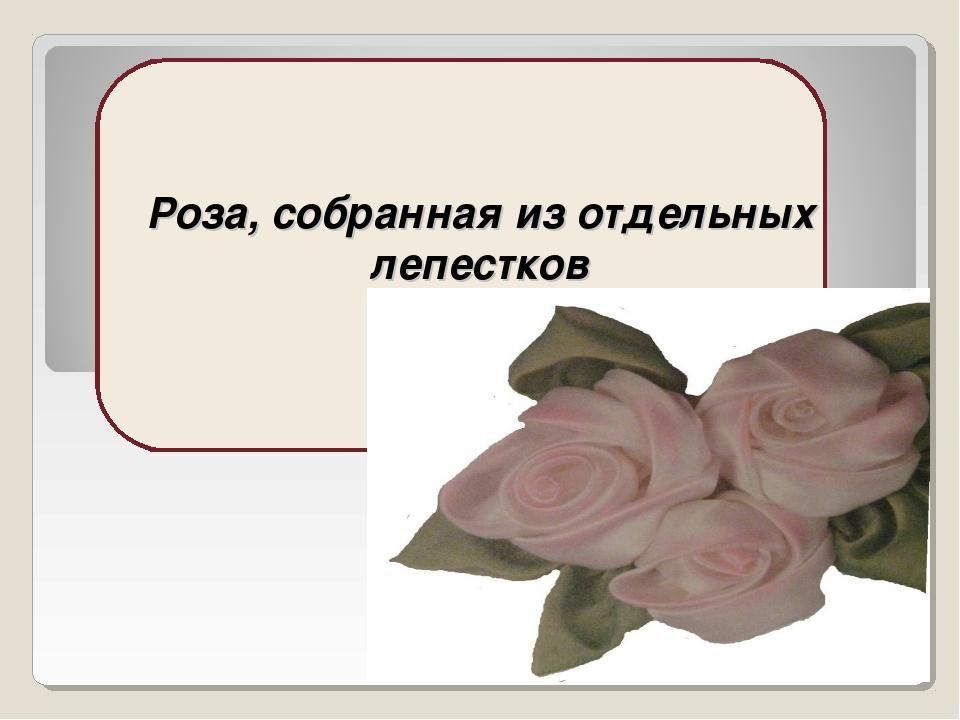 Роза, собранная из отдельных лепестков
