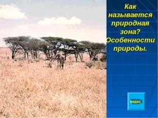 Как называется природная зона? Особенности природы. видео