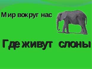Мир вокруг нас Где живут слоны