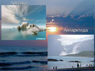 * Арктика Антарктида