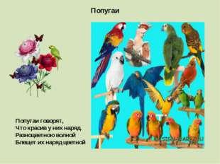Попугаи Попугаи говорят, Что красив у них наряд. Разноцветною волной Блещет и