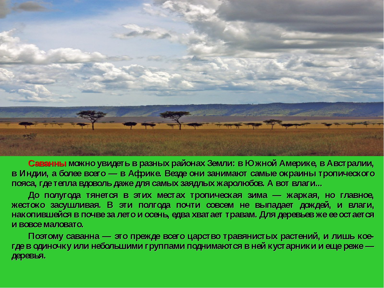 Саванны можно увидеть в разных районах Земли: в Южной Америке, в Австралии,...